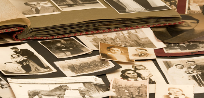 Discover Your Family Tree: Genealogy for the Absolute Beginner