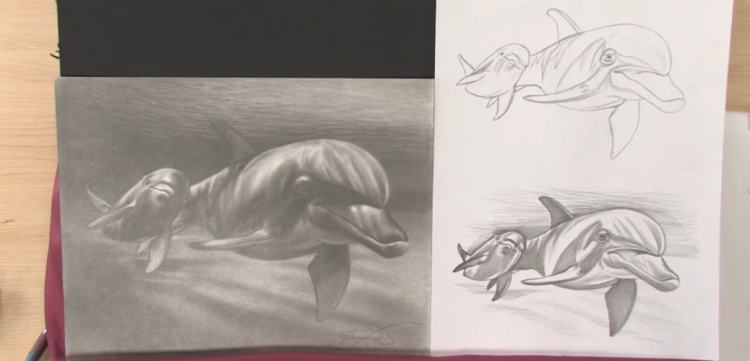 Art Lessons: Draw Animals in Nature
