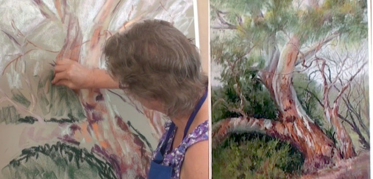 Colour in Your Life: Pastel Art Lesson