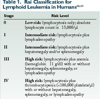 Lymphoid Leukemia in Dogs - VetFolio