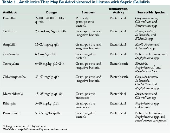 Septic Cellulitis - VetFolio