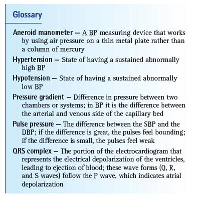 Arterial Blood Pressure Measurement Vetfolio
