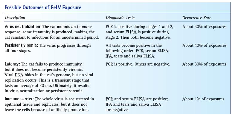Feline Leukemia Virus - VetFolio