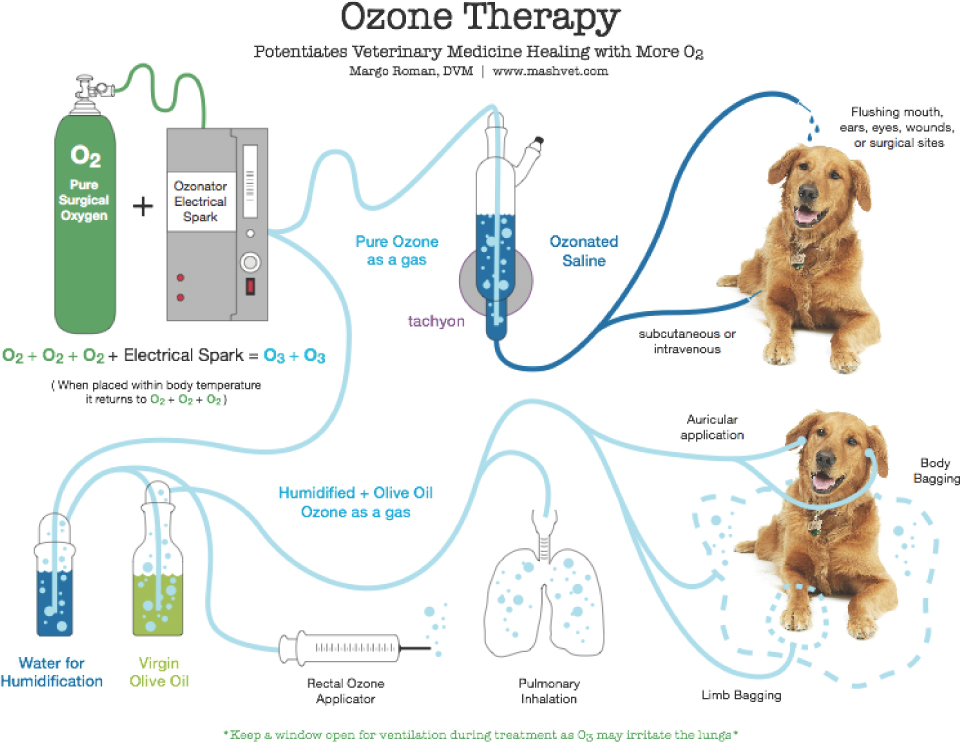 Ozone Therapy: Beyond Oxygen 2013
