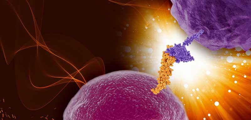 Precision Medicine in Immuno-Oncology: The Evolving Role of Current and Emerging Biomarkers: Immunology as it Relates to Current and Emerging Biomarkers