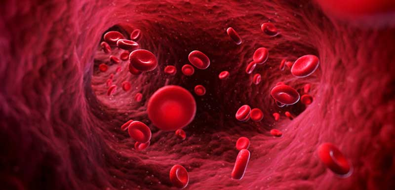 Severe Hypoglycemia: The Frequently Forgotten Threat