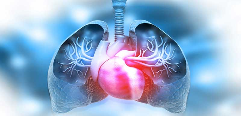 Are PAH-targeted Therapies Beneficial for CTD-PAH?