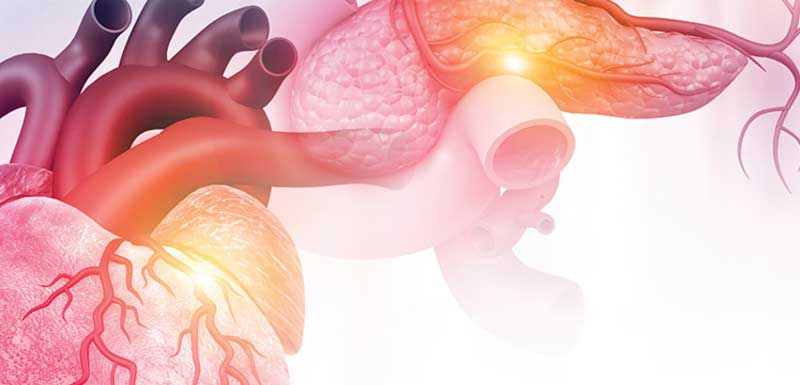 Type 2 Diabetes and Cardiovascular Outcomes: Updates on SGLT2 Inhibitors and GLP-1 Receptor Agonists