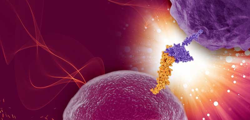免疫肿瘤学的精密药:当前和新兴生物标志物的不断发展:改善生物标志物试验方法