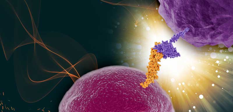 Precision Medicine in Immuno-Oncology: The Evolving Role of Current and Emerging Biomarkers: Incorporating Biomarkers Into Clinical Practice