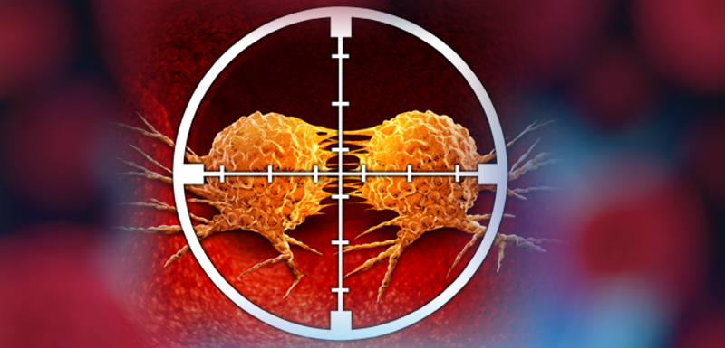 Targeted Treatments for Urothelial Cancer