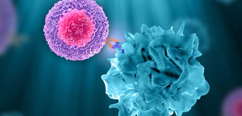The Core Essentials of Immuno-Oncology Now and Into the Future: Pathophysiology, Mechanisms, Immunotherapy and irAEs – Cancer Immunology