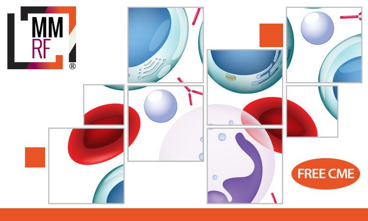 Shaping the Future of Myeloma Treatment