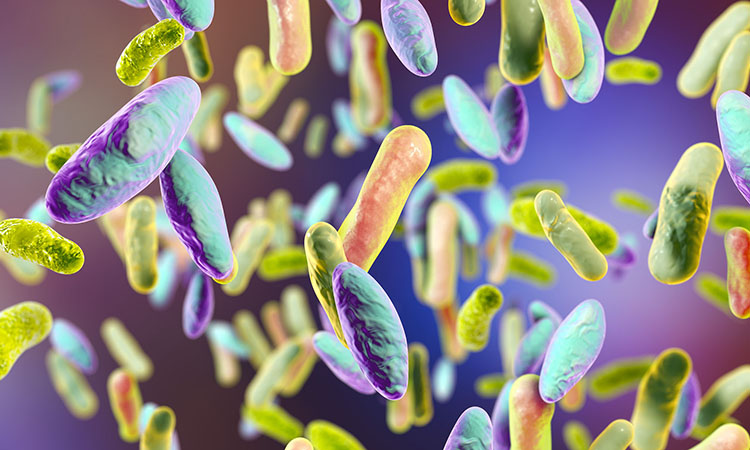 Improving the Lives of Patients with Clostridium difficile Infection One Case at a Time